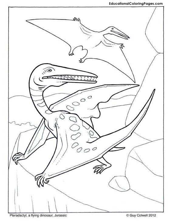 pteradactyl coloring pages dinosaur coloring pictures dinosaur coloring pages pinterest. Black Bedroom Furniture Sets. Home Design Ideas
