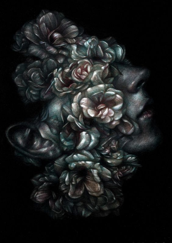 Drawings of Flora and Fauna by Marco Mazzoni
