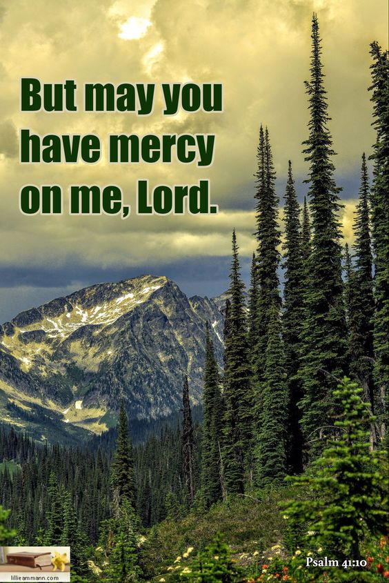 Psalm 41:10 / But may you have mercy on me, Lord.