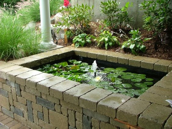 Raised koi pond by signature outdoor concepts for Elevated koi pond
