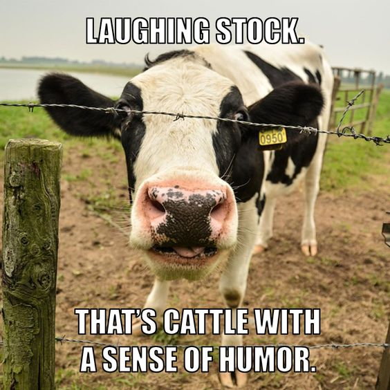 15 Great Farming Memes that say exactly what's on your mind | AGDAILY