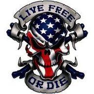 Wicked skull w/ American Pride!