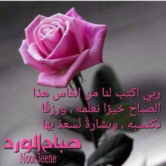 صور صباح الخير واجمل عبارات صباحية للأحبه والأصدقاء موقع مصري Good Morning Arabic Happy Morning Quotes Morning Greetings Quotes