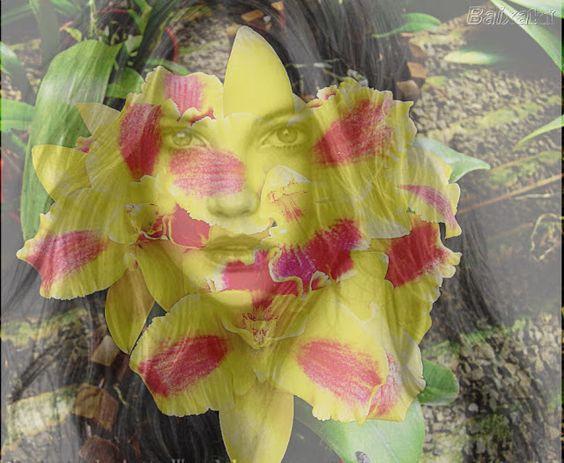 Vitoriosa: Beleza de vida curta