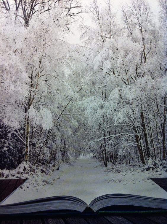 Bildergebnis für bücher winter