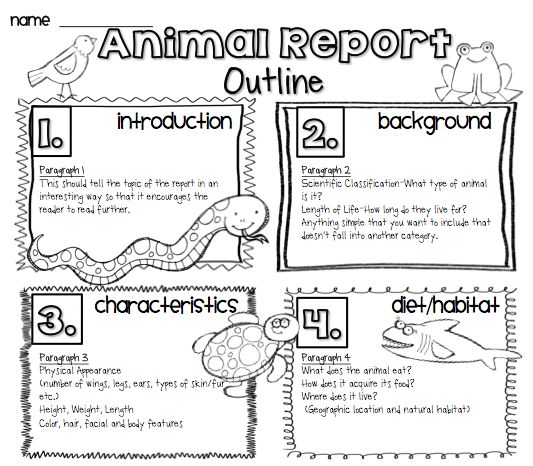Animal Research Writing Report Free  School Stuff