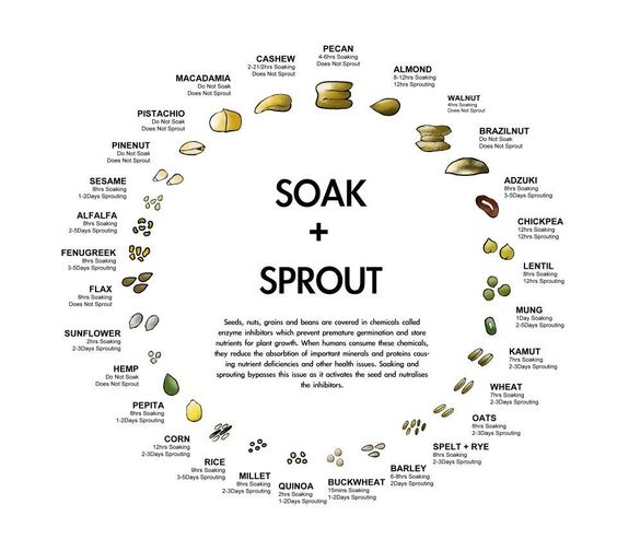 Soak & Sprout Chart for Nuts, Seeds, Grains and Beans
