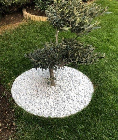Epingle Par Frederic Serrano Sur Deco Jardin Zen En 2020 Bordure