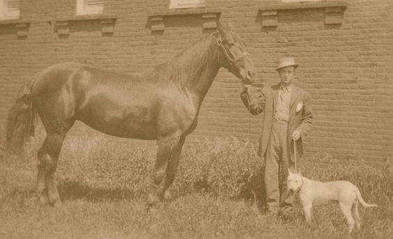 1925 colección C.H.