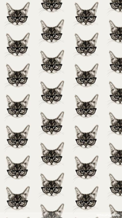 Imagen de cat, wallpaper, and background