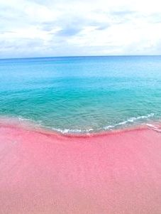 Pink Beach in Antigua