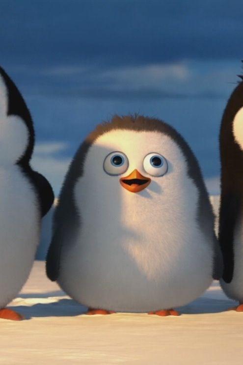 penguins aus madagascar film baby