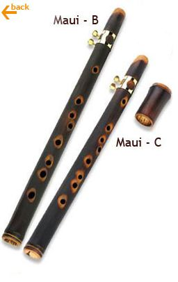 MAUI XAPHOON, learnt about this from Will Grove White's site. € 74 to € 92