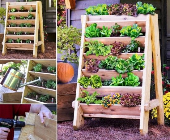 DIY Herb Wall Planter Is An Easy Project | The WHOot
