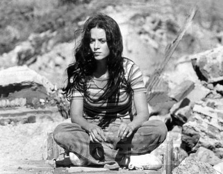 Sonia Braga, Brazilian actress
