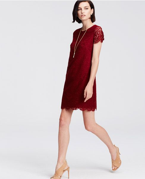 Love the the color, lace, lining, and fit of the shift dress || Ann Taylor Petite Lace Shift Dress