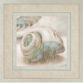 Found it at Wayfair - Coastal Gems II by Seba Framed Graphic Art