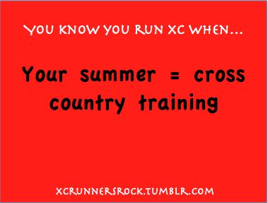 Hahaha. This was my summer. But I hadn't even ran an XC season yet. I was just making up for lost time that I hadn't been running all these years.