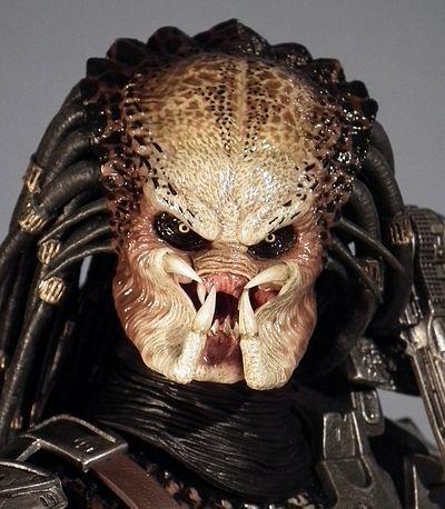 Predator Face Google Search Predator Pinterest