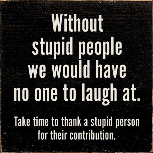 Stupid People Quotes Laughing At Stupid People Quote Quote Number 599697 Stupid People Quotes Husband Quotes Funny Stupid People