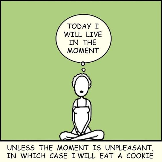 Today I will live in the moment . . . unless the moment is unpleasant.  In which case I will eat a cookie.