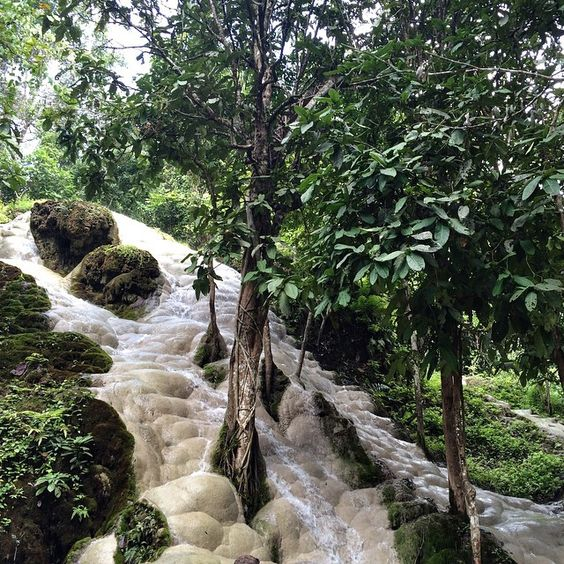 Sticky waterfalls Chiang Mai, Thailand.: