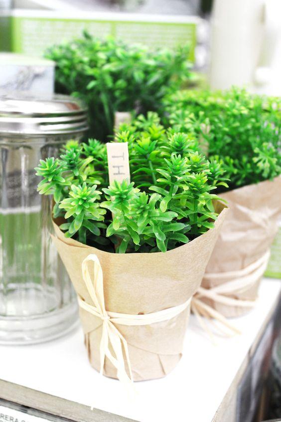 ¿Te gustan las plantas? ¿Te duran poco las naturales?