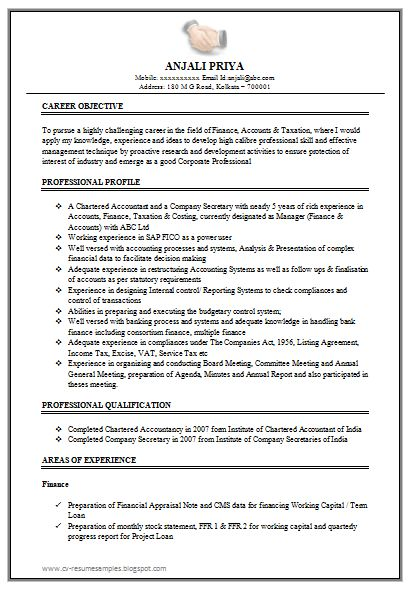 excellent work experience chartered accountant resume