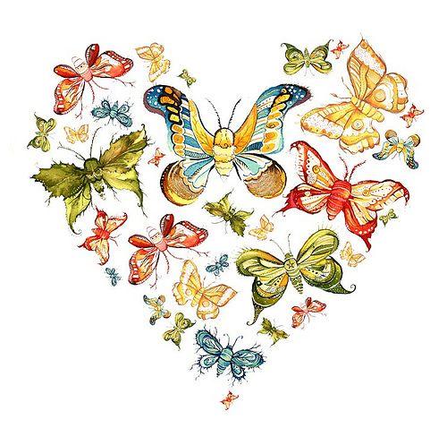 Butterfly heart: