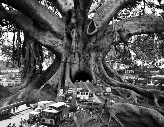 Thomas Barbéy, il fotografo surrealista che reinventa la realtà