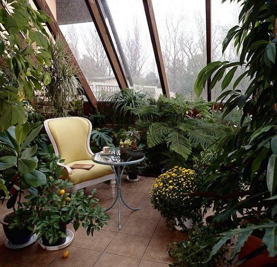 Pflanzen-wintergarten-ideen-einrichten-baume-moebel | Interieur ... Pflanzen Wintergarten Design Ideen