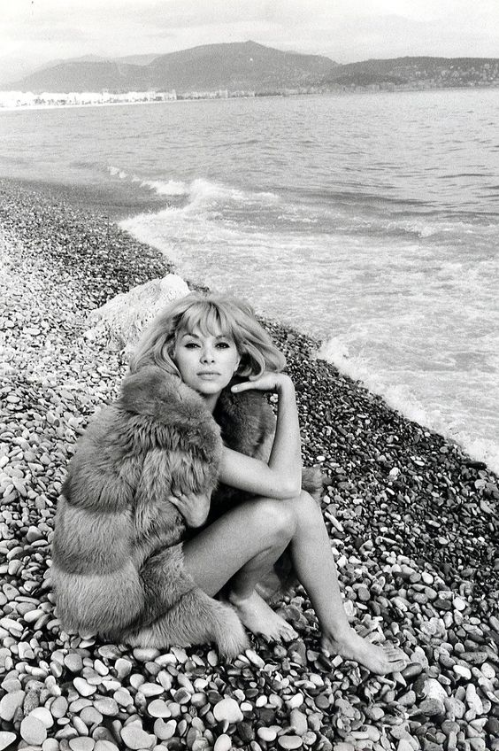 Mireille Darc (born: 15 May 1938, Toulon, France) is a French model and actress. Her debut came in 1960 in La Grande Brétèche. She was Alain Delon's longtime co-star and companion. She appeared in in Jean-Luc Godard's 1967 film Week End. Darc is a Chevalier of the Légion d'honneur and Commandeur of the Ordre national du Mérite.