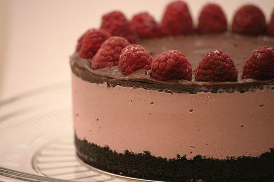 Chocolate Raspberry Ice Cream Cake (FlickrFav)