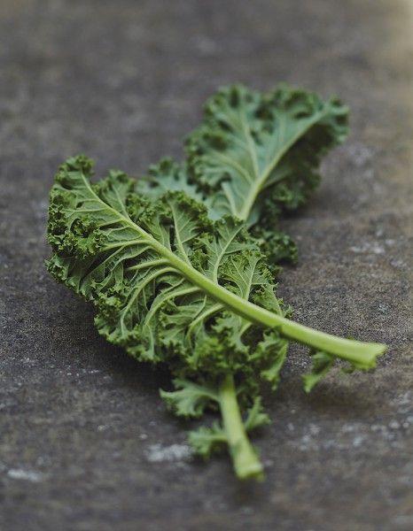 Adresses : où trouver du kale? - Elle à Table