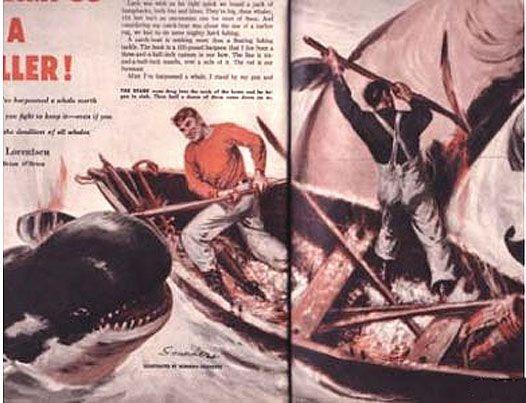 Pulp magazine killer whale