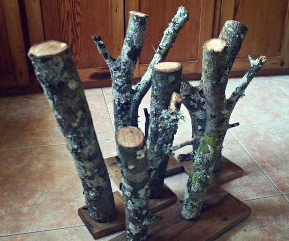 Make a lichen garden
