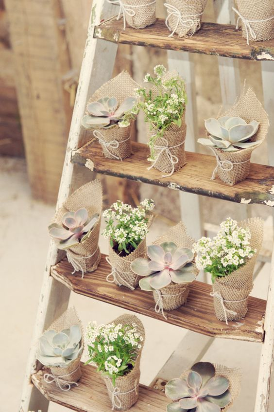 Succulents are so cute and a favorite of mine for a spring wedding favor. (Hint: they're also surprisingly affordable!)