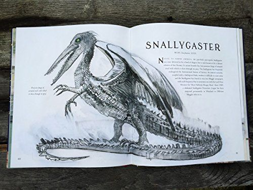 Image Result For Fantastic Beasts And Where To Find Them Book Illustrations Fantastic Beasts Fantastic Beasts And Where Jk Rowling Fantastic Beasts