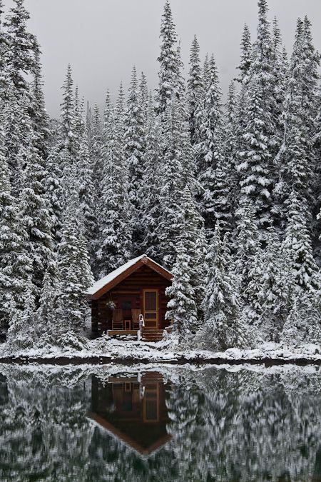 Solitude. YOHO NATIONAL PARK: Beautiful <3