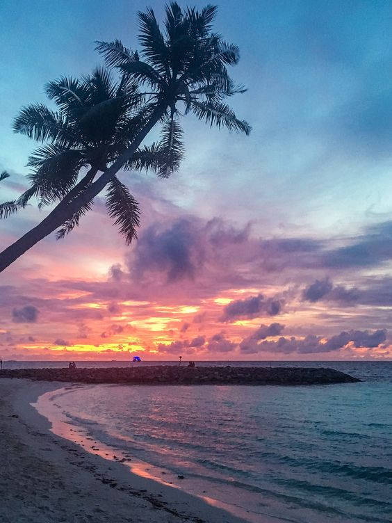 Find the top tips for your trip to the Maldvies! What to expect in the Maldives, What to wear in the Maldives,  Sun protection the Maldives, Where to stay in the Maldives, The best islands in the Maldives