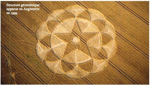 Depuis une trentaine d'années, les crop-circles apparaissent dans les champs de céréales, de blé en particulier, au moment de leur maturité, ce végétal se prêtant particulièrement bien à l'élaboration de dessins complexes et précis. Cette manifestation n'est pas nouvelle puisqu'une gazette anglaise de l'an 1678 en parle déjà