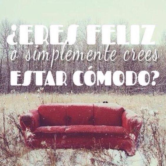 #zonadeconfort #saldelazonadeconfort