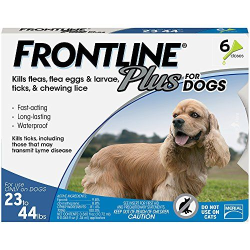 Common Dog Skin Problems And How To Help Them Frontline Plus For Dogs Tick Control For Dogs Fleas