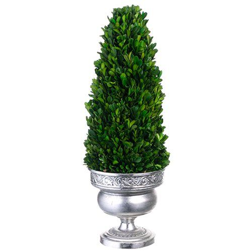 20'Hx7'W Preserved Boxwood Cone-Shaped Topiary Plant w/Tin Urn -Green >>> Visit the image link more details.