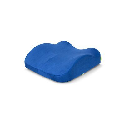 Symple Stuff Fauntleroy Indoor Outdoor Backrest Pillow Backrest