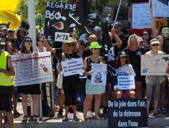 Des centaines de manifestants exigent la fermeture de cette prison honteuse où des animaux sont privés de tout ce qui compte pour eux.