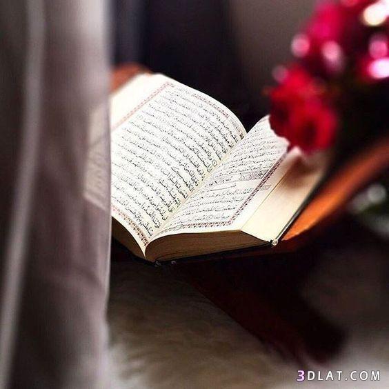 صور مصاحف خلفيات مصاحف صور اسلاميه جديده حصري مجموعه جديده من خلفيات Quran Sharif Quran Book Quran Karim