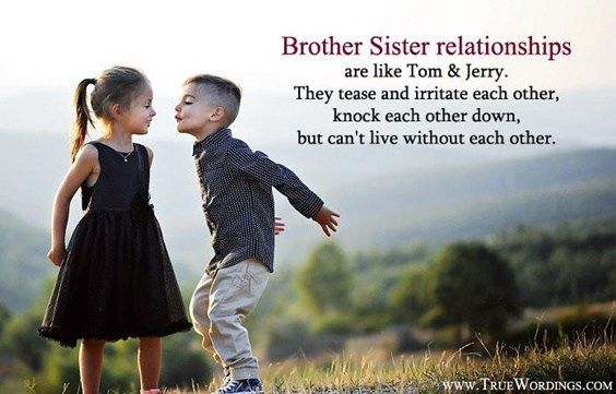 The 100 Greatest Brother Quotes And Sibling Sayings Sister Quotes Sister Love Quotes Brother N Sister Quotes