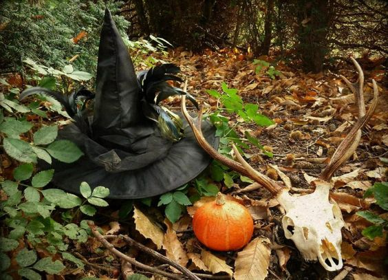 Samhain     ✯ Visit lifespiritssocietyofmagick.com for love spells, wealth spells, healing spells, and LOA info.