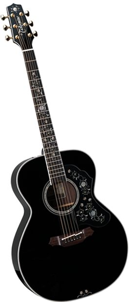 Takamine Guitar.  One day, when I can spend this much on a guitar and I can play well enough to deserve one.